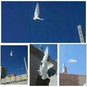 بانوان طلبه تفتی روز قدس را با آزادی کبوتران سفید ماندگار کردند