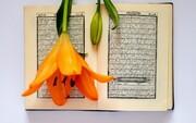 الدرس القرآني الثامن والعشرون؛ وَيُزَكِّيهِمْ وَيُعَلِّمُهُمُ الْكِتَابَ وَالْحِكْمَةَ وَإِن كَانُوا مِن قَبْلُ لَفِي ضَلَالٍ مُّبِينٍ