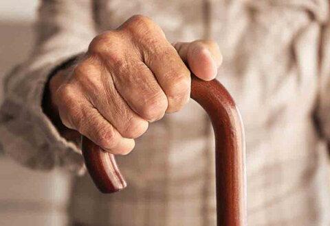 پیران و سالخوردگان