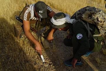 حشد الشعبی ۷۰۰ کیلومتر از کرکوک را از وجود داعش پاکسازی کرد