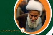 شاگرد آیت الله ادیب از استادش می گوید/ عالمی که به شیخ بهایی زمان شهره بود