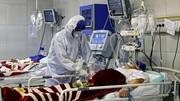 ۶۶۵ بیمار کرونایی جان خود را از دست دادند