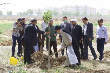 تصاویر/ احیای محوطه سوخته و فضای سبز جامعة الزهرا(س)
