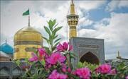 کرامت رضوی از مشهد الرضا(ع) تا به خانه نوجوان کاشانی رسید