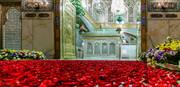 تصویری رپورٹ حرم امام رضا (ع) کے اندر پھولوں کی شاندار اور خوبصورت سجاوٹ