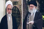 علماء و مراجع، خاص طور پر رہبر معظم کی قیادت سے،آج ہمارے ملک کے بے شمار علاقوں میں دینی خدمات کا ایک طویل سلسلہ جاری ہے، مولانا سیدحمید الحسن زیدی