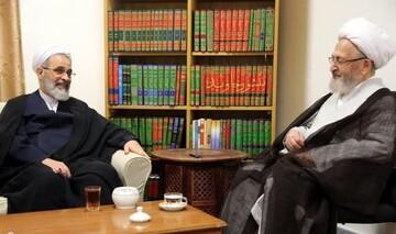 دیدار مدیر حوزه های علمیه با آیت الله العظمی سبحانی