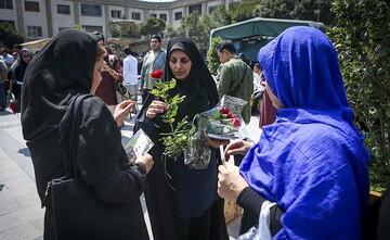 تأمین امنیت زن در کوچه و خیابان با رعایت حجاب/ زنان کرامت خود را زیرپا نگذارند