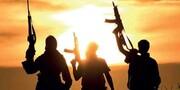 ہندوستان میں عالمی دہشت گرد تکفیری تنظیم داعش کی موجودگی کا انکشاف