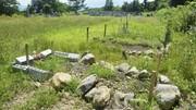 زمین کافی برای دفن اموات مسلمانان در ژاپن وجود ندارد
