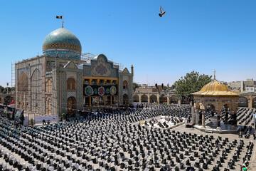 توزیع ۲۵۰۰ بسته معیشتی در رزمایش «شمیم حسینی» قزوین + عکس
