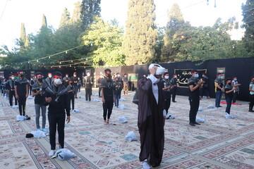 تصاویر/  همایش احلی من العسل در شیراز