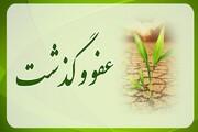 عفو و گذشت مهمترین پیام اربعین حسینی است