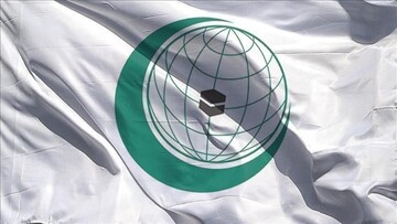 Top Islamic group discusses rights situation in Kashmir