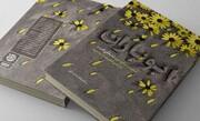 بازخوانی خاطرات جانشین تیپ فاطمیون در «ابوباران»