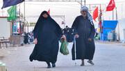 بالصور/ كبار السن يتحدون الصعاب ويواصلون المسير نحو كربلاء لاحياء مراسم زيارة الاربعين