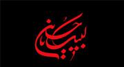 اهداف سیدالشهداء(س) با تبلیغ و روشنگری حضرت زینب(س) محقق شد