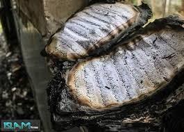 Copies of Quran burned by Danish extremists in Muslim neighborhood