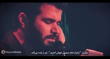 فیلم | مداحی عربی «زائران امام حسین(ع) خوش آمدید» با نوای میثم مطیعی