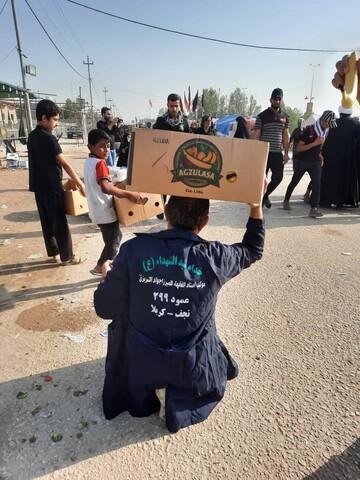 تصاویر ارسالی مخاطبان حوزه نیوز از راهپیمایی اربعین امسال