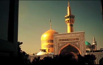 نماهنگ «محبان الرضا» با نوای امیر عباسی
