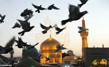 احرام عزا در سوگ سلطان خراسان