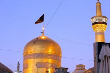 كلام الإمام الرضا(ع) في فضل عترة النبي(ص)