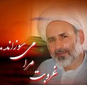 حجت الاسلام هاشمی، رئیس شورای شهر سجزی درگذشت