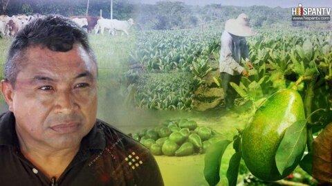 مستندی از«آلوارو آلتامیراندا»