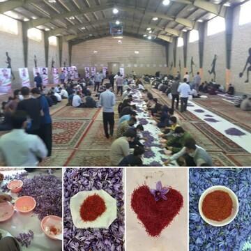 شرکت طلاب جهادی مدرسه علمیه دارالسلام تهران در طرح «جهاد زعفران»