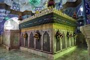 بالصور/ تزيين شباك ضريح السيدة فاطمة المعصومة (ع) بالورود في ذكرى وصولها إلى مدينة قم المقدسة