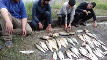 پرورش ماهی در یک مدرسه علمیه + عکس