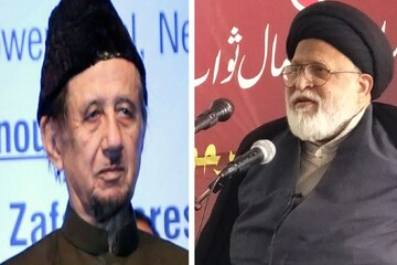 مرحوم حکیم امت تنظیم المکاتب کے مخلصین میں سے تھے آپ کی رحلت ایک عہد کا خاتمہ، مولانا سید صفی حیدر زیدی