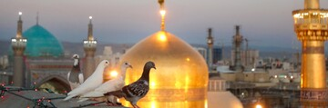 Imam Reza (AS) era marks development of rational interpretation