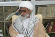 مدیر حوزه امام عصر(عج) پاکستان: شهادت دکتر فخریزاده خسارت بزرگی برای مسلمانان است