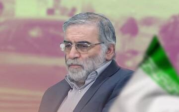 اقلیم کردستان عراق ترور شهید فخری زاده را محکوم کرد