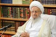 دشمن کے وحشیانہ حرکتوں کا دندان شکن جواب دیا جائے، آیت اللہ مکارم شیرازی