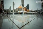 تصاویر/ حال و هوای بارانی حرم حضرت امیرالمؤمنین (علیه السلام)