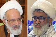 روحانی پاکستانی: استاد جعفر الهادی شاگردان بسیاری را تربیت کرد