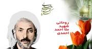 روحانی اهل سنت که در انتخابات خبرگان رهبری شهید شد