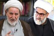روحانی پاکستانی: آیتالله یزدی از پایهگذاران انقلاب اسلامی بود