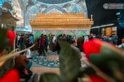 تصاویر/ حال و هوای حرم حضرت امیرالمومنین (ع) در سالروز ولادت حضرت زینب کبری (س)