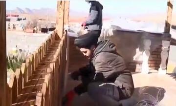 فیلم | خدمت رسانی طلاب جهادی مدرسه علمیه دارالسلام تهران در روستای چمن گلین سرپل ذهاب