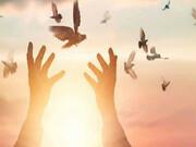 یک میلیارد تومان مراسم ترحیم دوران کرونا به آزادی زندانیان یزدی اهدا شد