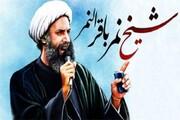 حضرت آیت اللہ شیخ باقر نمر، اللہ کی راہ میں جدوجہدکرتے ہوئے شہید ہوئے، حجۃ الاسلام مولانا فدا حسين یزدانی