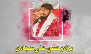 امیر المومنین کی زندگی کا ہدف ہی انسانیت کی کامیابی و سعادت، حسن علی سجادی