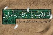 حضرت فاطمہ زہرا سلام اللہ علیہا معصومین علیہم السلام کی نظر میں