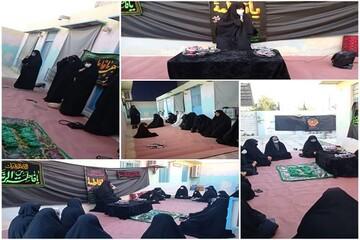 کلیپ/ مراسم عزاداری شهادت حضرت زهرا (س) توسط طلاب مدرسه حضرت زینب (س) بوشهر