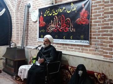 تصاویر/ همایش رهروان یاس نبوی در سراب
