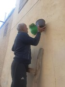 اجرای طرح سبز ماندگار در محله سنگ سیاه شیراز